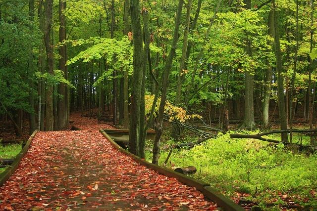 Hanlon Creek Park near Kortright/Edinburgh entrance