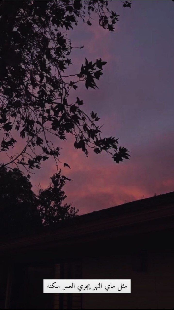 ستوريات بدون حقوق خلفيات كتابات كلمات ستوري انستا صور Funny صديقتي صباحيات رمزيات العراق مضاهرات بنات بغداد شباب غماز In 2021 Celestial Outdoor Sunset