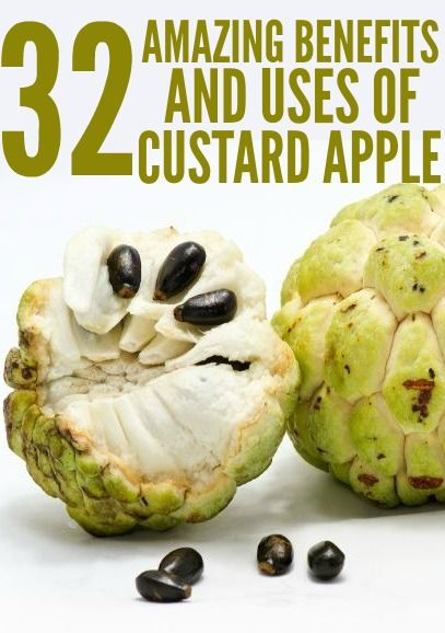 32 Amazing Benefits And Uses Of Custard Apples: The fruit contains compounds like acetogenin and alkaloids that reduce the risk of cancer and renal failure. It acts against cancer cells, without adversely affecting healthy cells. Antioxidants such as asimicin and bullatacin are also found to have anti-cancer and anti-helminthes properties.