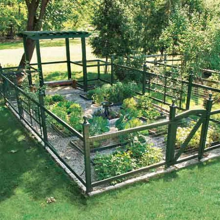Amazing Ideas For Growing A Successful Vegetable Garden (48)