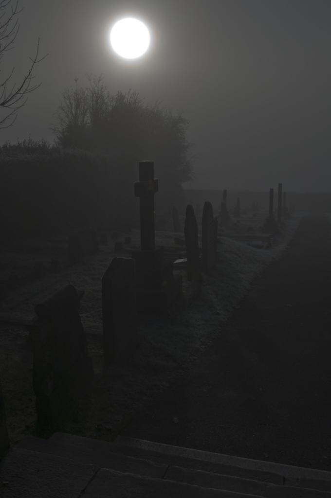 spooky | graveyard | darkness | moonlight | graves | eerie…
