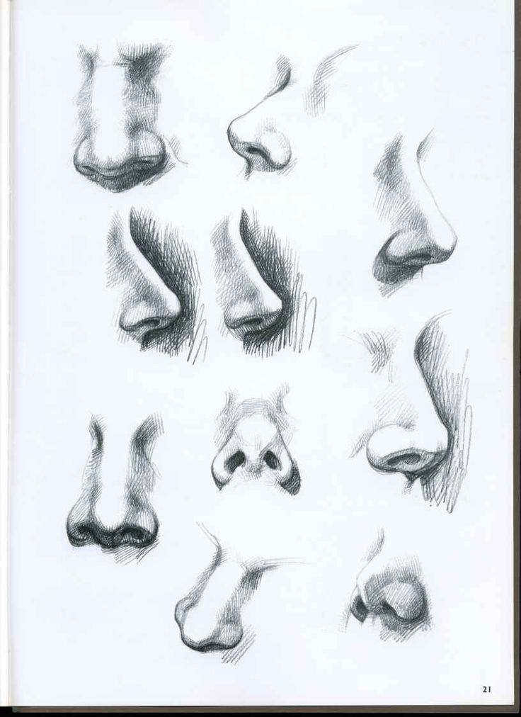 Drawing a cartoon nose