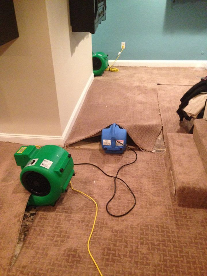 Pin By Dna Fresh Carpet Cleaning Restoration On Water Damage Diy Cleaner How To Clean Rug