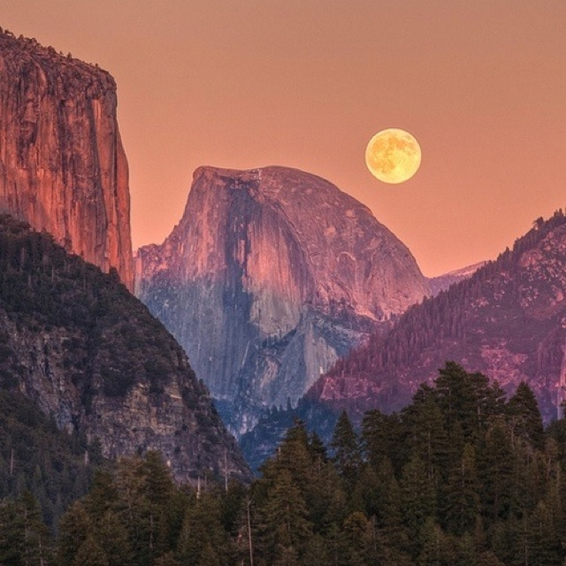 Yosemite, one of my first memories is camping here with my parents & locking our food in the wooden box at night to keep away the bears