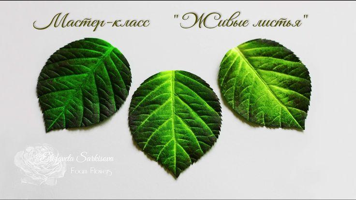 02 Живые листья