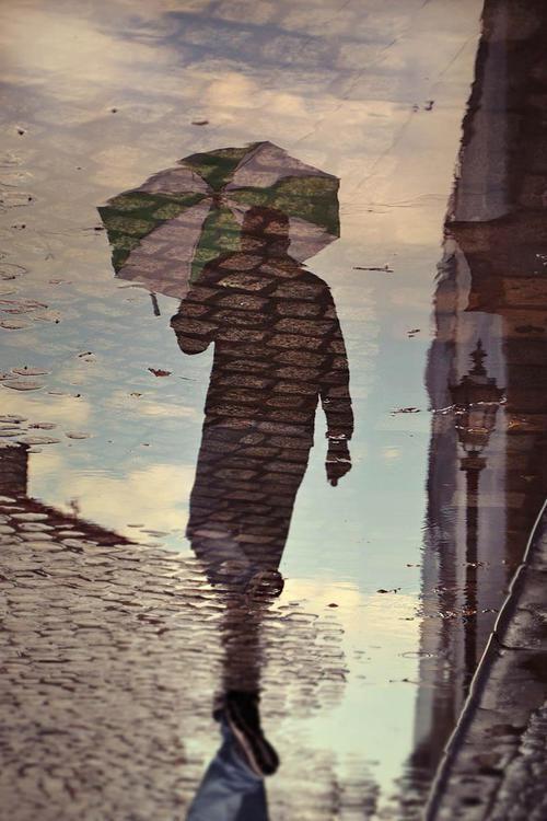 Umbrella reflection in the rain