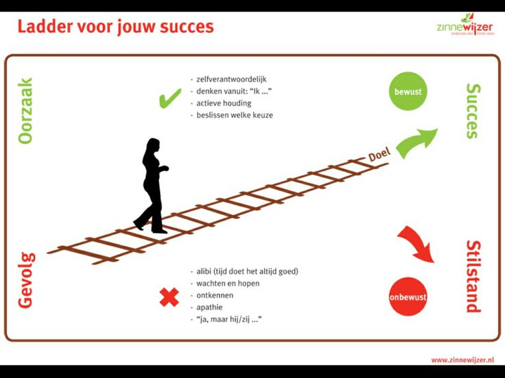 Ladder voor jouw succes. Ben jij je bewust van je houding en keuzes?
