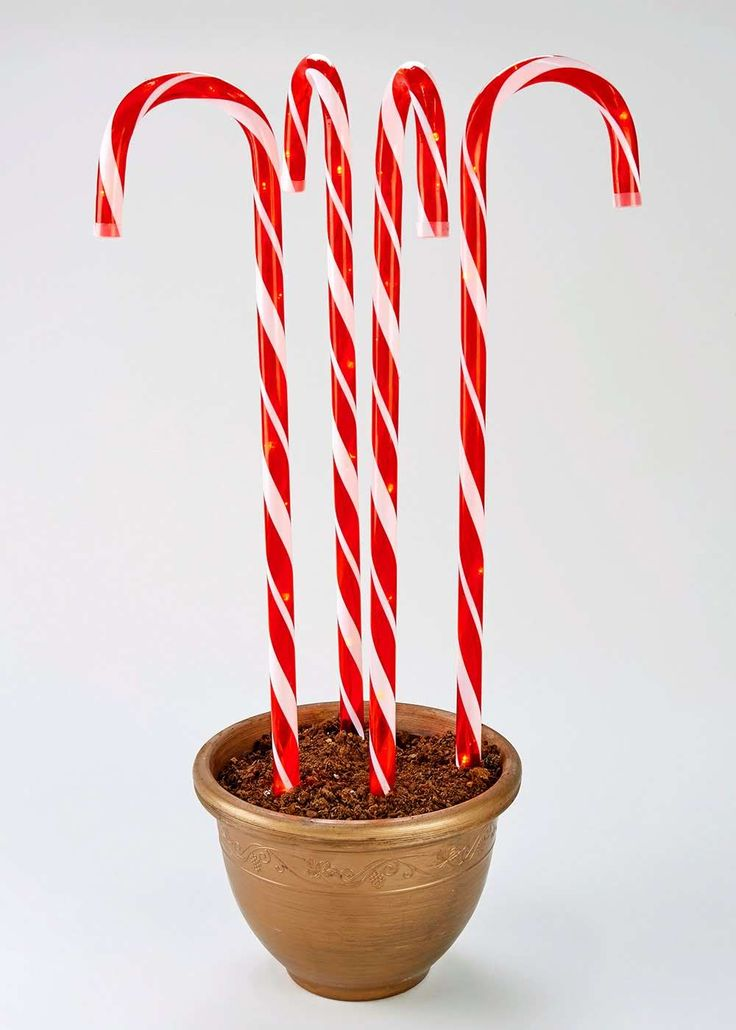 Set of 4 Candy Cane Christmas Lights (70cm) View 1
