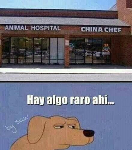 Si porque dicen que en china comen perros jaja