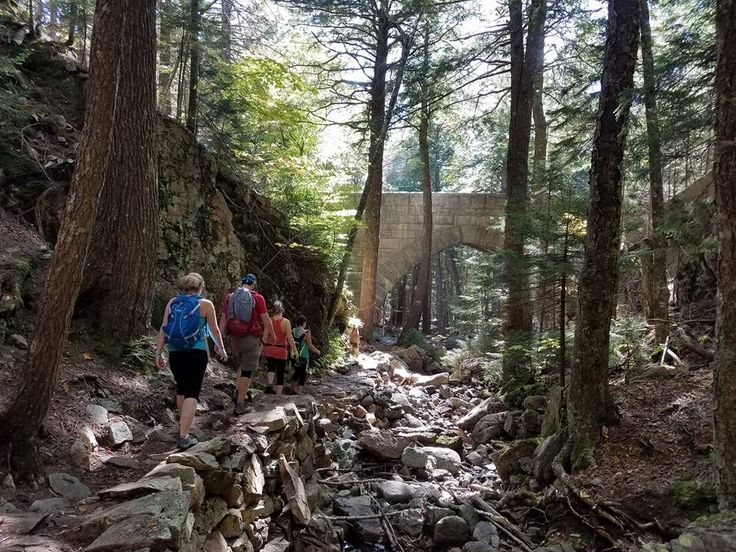 The beautiful trails and bridges of Acadia National Park #hiking #camping #outdoors #nature #travel #backpacking #adventure #marmot #outdoor #mountains #photography