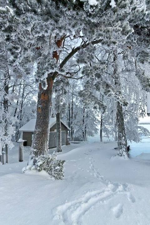 Cabin in the Snow,Helsinki, Finland