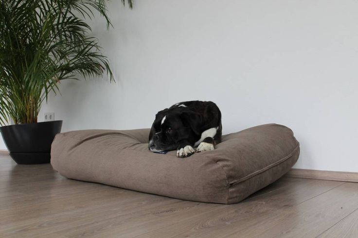 Dog's Companion dog bed liver corduroy