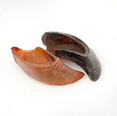 Natural Cravings - USA Cow Hooves Chew