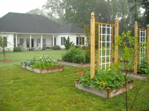 Raised Bed Gardens 4x4! Beautiful.