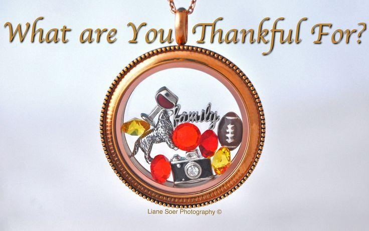 I am thankful for my family, my love of capturing a piece of history with a photo, our dogs, football and a good glass of wine with friends! #OrigamiOwl #ThanksGiving #thankful #family #football #photography Put what your thankful of in an Origami Owl #locket bracelet or watch at lianesoer.origamiowl.com
