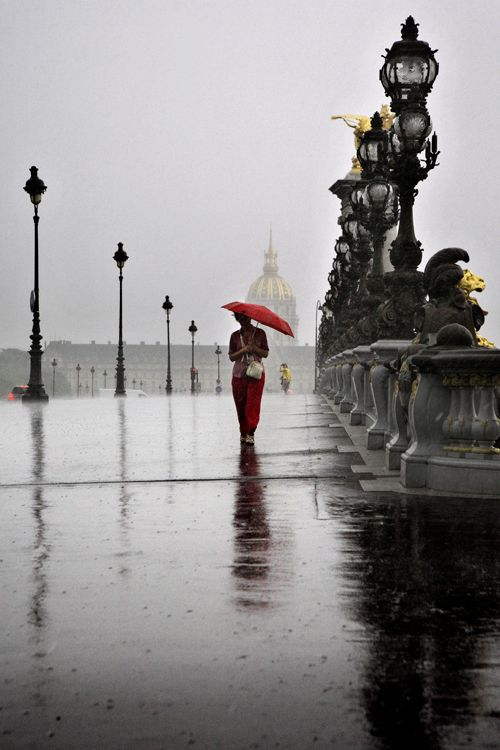 Le Pont Alexandre III un jour de pluie