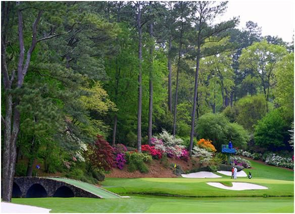Augusta is not only one of the most exclusive clubs in the world but also one of the most attractive, with each hole named after the abundant flora that grows around the course.