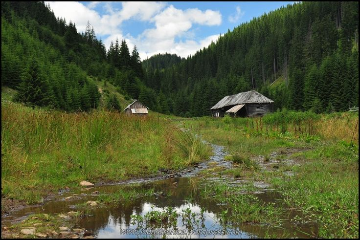 Valea Zabalei - Vrancea