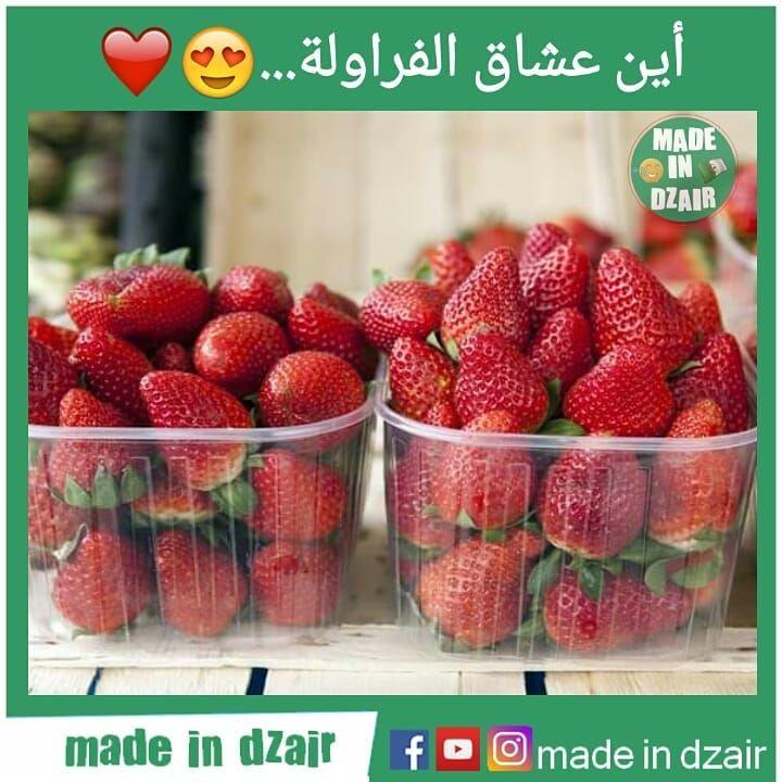 شاب جزائري صانع أفلام قصيرة زورو حسابه Mabino Dz Mabino Dz Mabino Dz Food Strawberry Fruit