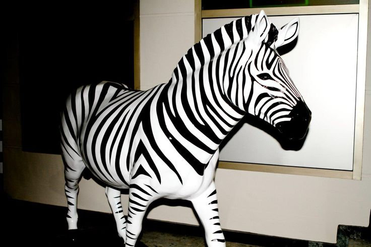 Endurocad Zebra - Thanks to Investec