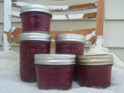 How to Make Chokecherry Jelly with minimal sugar or honey   The Prairie Homestead