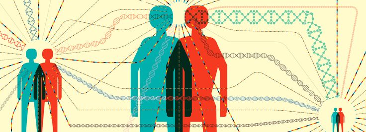 Autism is a complex condition, with a wide range of features that vary in their severity. Autism's genetic roots are equally complex. The condition runs in