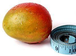 Irvingia, ein Extrakt der afrikanischen Mango, wird in Afrika schon seit Jahrhunderten für viele verschiedene medizinische Zwecke verwendet. In jüngster Zeit wurden einige Studien zur Verwendung dieses Extrakts für die Gewichtsabnahme durchgeführt. In den beiden randomisierten Studien an übergewichtigen und fettleibigen Personen, die Irvingia einnahmen, verloren die Teilnehmer in der Irvingia-Gruppe durchschnittlich 5 bis 10 Pfund pro Monat im Vergleich zu der Gruppe, denen ein…