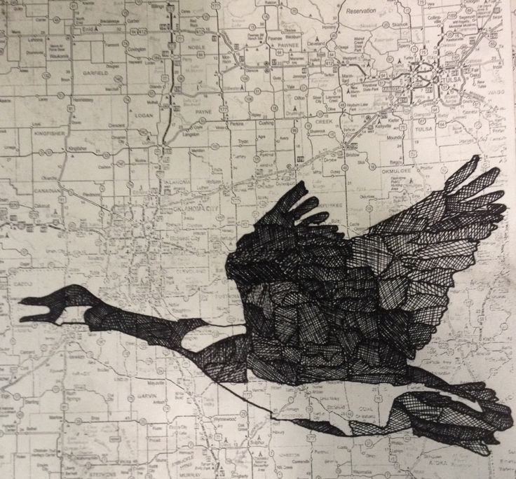 Pen and Ink drawing on a map by Miki Saito.