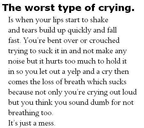 """The kind of crying that happens when I watch """"Les Miserables"""", """"Bright Star"""", """"City of Angels"""", """"Pay It Forward"""", """"Titanic"""", """"The Patriot"""" """"The Two Towers"""", """"Return of the King"""" or """"Last of the Mohicans"""".  Every time; without fail."""