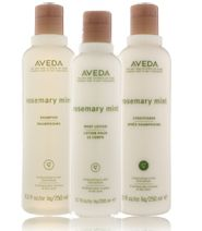 rosemary mint: Mint Trio, Invigor Care, Favorite Things, Aveda Experiment, Experiment Center, Beautiful Stuff, Aveda Rosemary, Mint Collection, Rosemary Mint