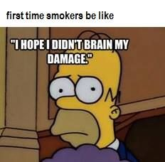 First time smokers be like: I hope I didn't brain my damage. #tuesdaymotivation #motivation #weed #funny #medicalcannabis#healthy#healthylifestyle#cbdoil #cannabisoil#cancer #Marijuana#Cannabis #Proposition64#LegalizeIt#PotValet#California#Medica