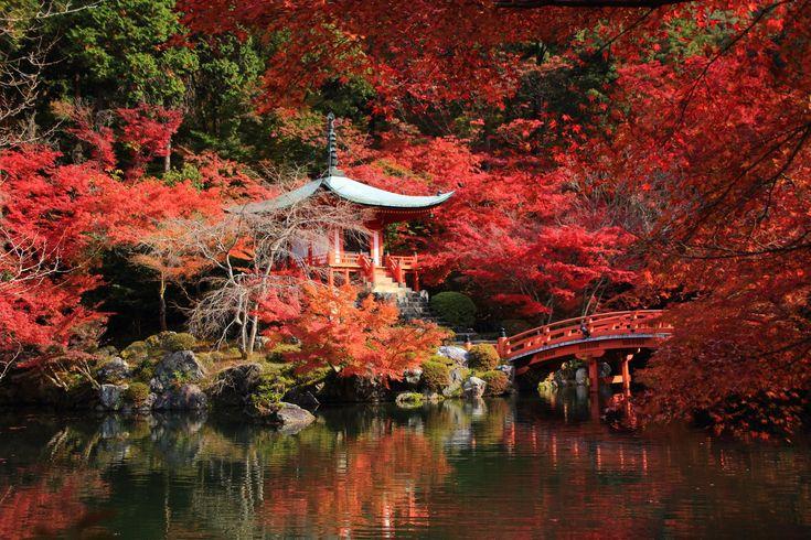 写真 醍醐寺 紅葉 高画質 秋 京都