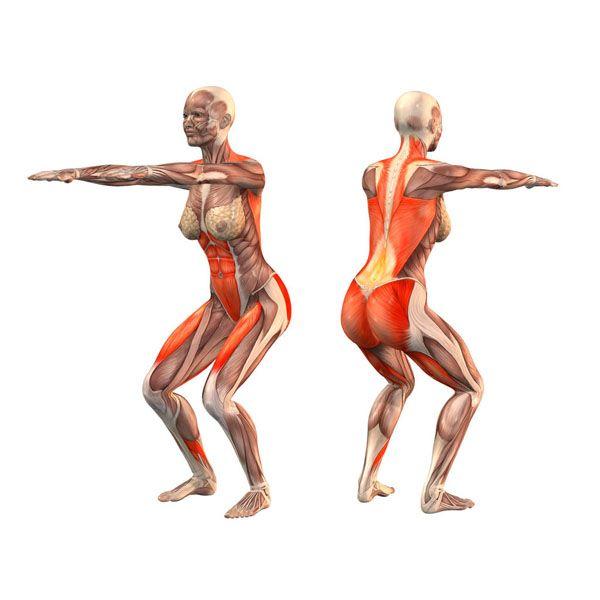 Chair pose, straight arms forward - Utkatasana straight arms forward - Yoga Poses | YOGA.com