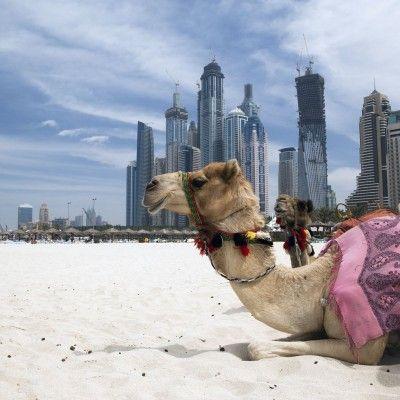 Größer, besser, Dubai! Willkommen in der Stadt der Superlative! - 6 bis 7 Tage ab 498 € | Urlaubsheld