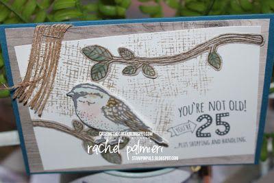 http://stampinpals.blogspot.com.au/2017/06/birthdays-begin-with-b-3-love-sympathy.html #rachelpalmieri #stampinup #handmadecard #bestbirds #fiveforall #caseingthecatty