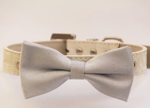Silver Bow Tie Wedding Dog Collar, leather, pets accessory, Chic and elegent