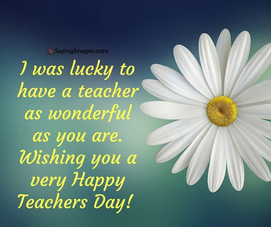 30 Happy Teachers Day Quotes And Messages: 21 Best Happy Teacher's Day Quotes Images On Pinterest