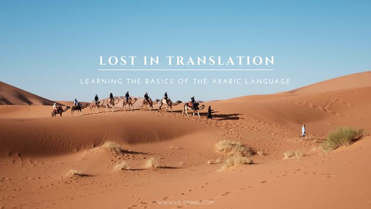 Lost in Translation: Learning the Basics of the Arabic Language