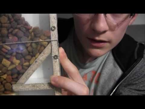 (16) Distributeur de croquettes Arduino ! - YouTube