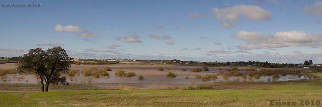 Blog del IES Laguna de Tollón: WORLD WETLANDS DAY: DÍA 2 DE FEBRERO: DÍA DE LOS H...