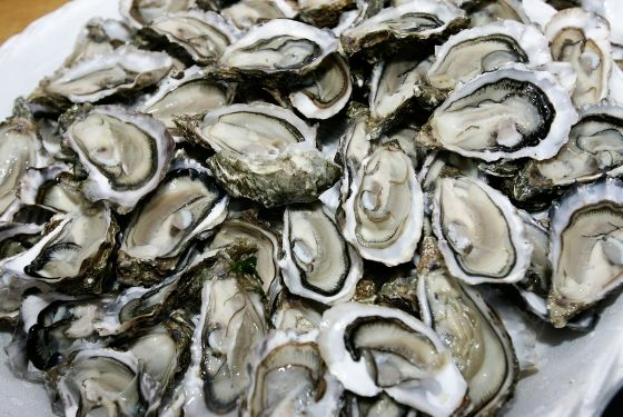 oyster happy hours..: New Orleans, Oysters Seasons, Orleans Foodies, Food Junkie, Oysters Roasted, Oysters Festivals, Hog Islands, Oysters Happy,  Grifola Frondosa
