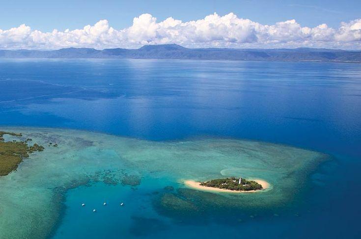 Port Douglas Half Day Snorkel Trips to Low Isles