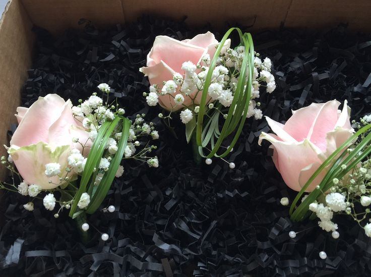 Pale pink rose and gypsophila button holes with modern grass loops