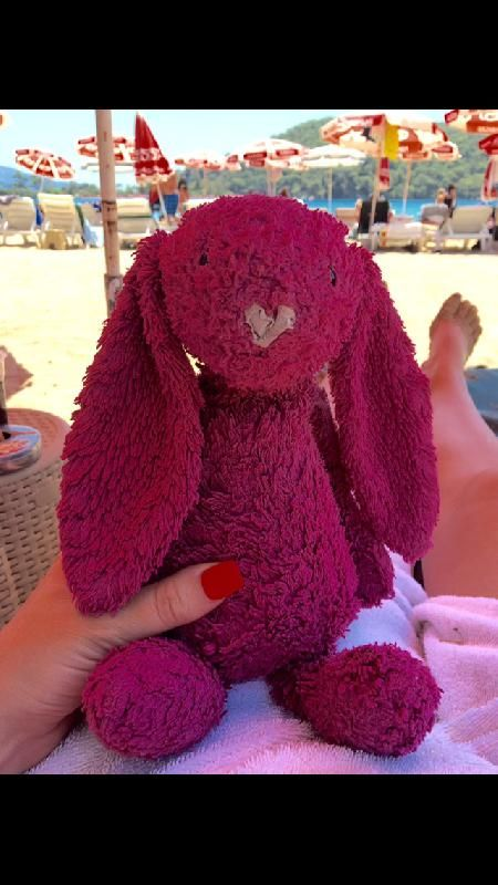 Lost on 25 Jul. 2016 @ Fethiye , Turkey. My 3 year old daughter has lost her beloved purple Jellycat rabbit, she is absolutely heartbroken ?? she has had him from her 1st birthday. He went missing on the 25th July at Fethiye, Turkey eithe... Visit: https://whiteboomerang.com/lostteddy/msg/o7it4m (Posted by David on 09 Aug. 2016)