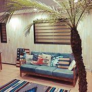 Overview,ソファー,ニトリ,海,フラミンゴ,Shellに関連する他の写真