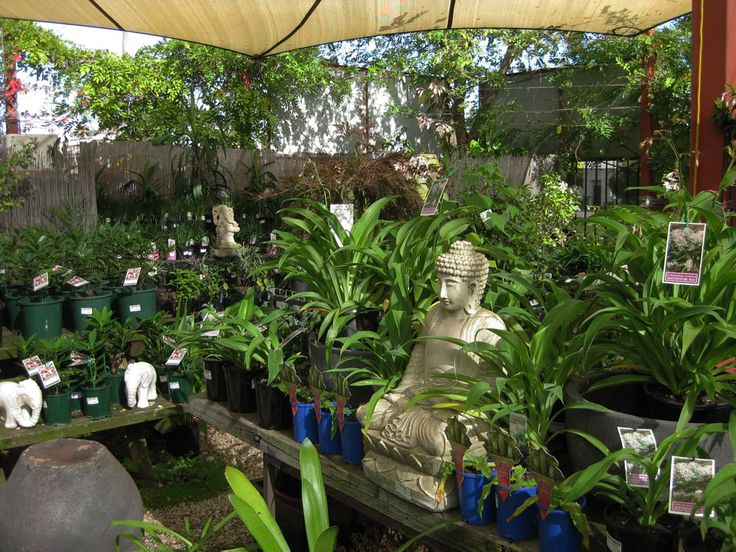 28 best Garden of Eden images on Pinterest | Garden of eden, Eden ...