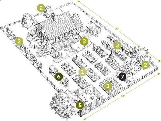 1 Acre Homestead Layout Plans