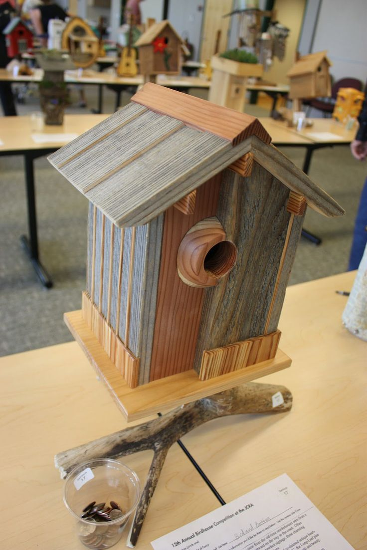 Birdhouse Ideas | The eco-roof on this contemporary birdhouse was a nice, green touch.
