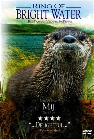 Ring of Bright Water: Mij the otter; love him. One of my favorite animal movies!