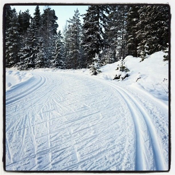 Cross country skiing tracks by Ahvenisto